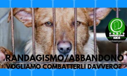 Sardegna: abbandono e randagismo. Vogliamo combatterli davvero?