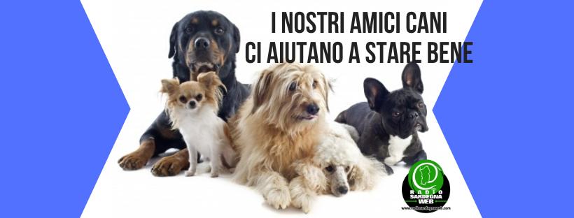 Il cane: compagno di vita indispensabile