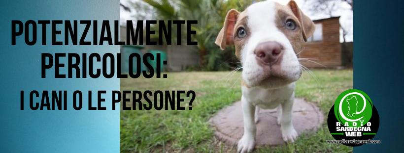 Potenzialmente pericolosi: le persone o i cani?