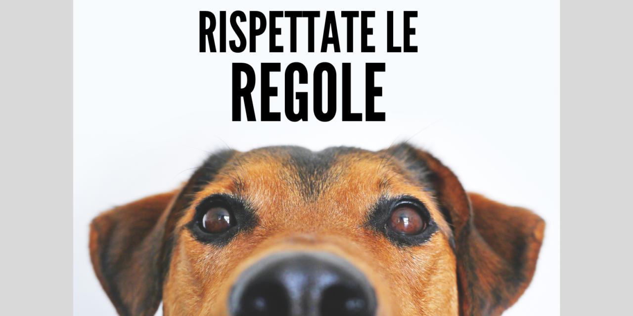 Cane: alcune regole fondamentali