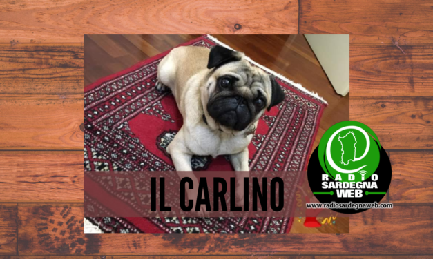 Il Carlino