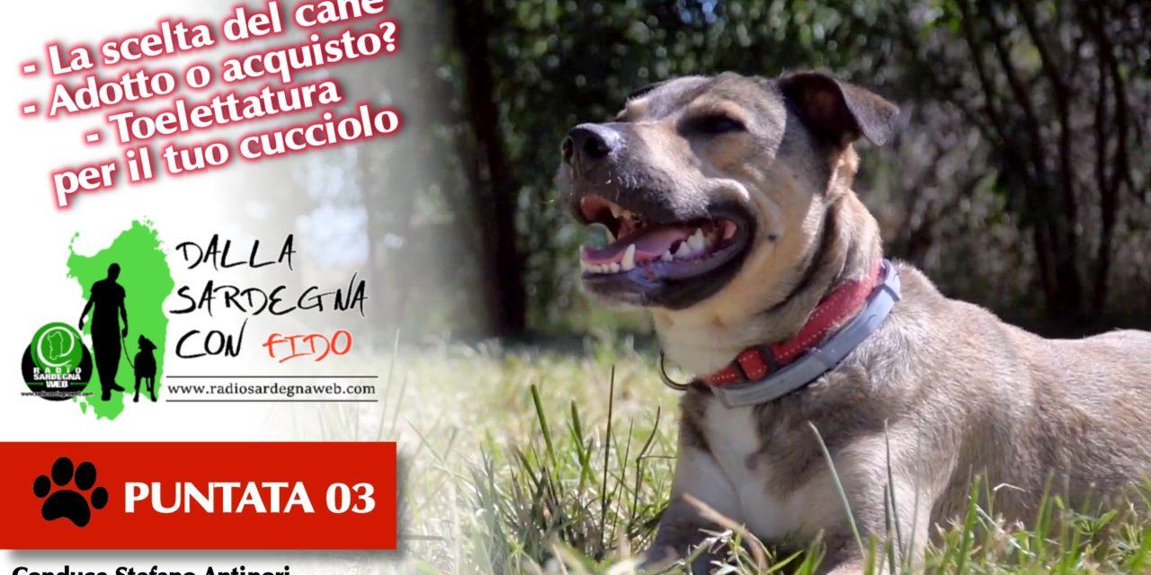 Vorrei un cane, lo compro o lo adotto? – Dalla Sardegna Con Fido [ 03 ]