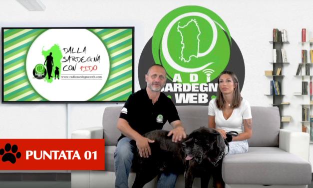 Matilde Rossi è l'ospite della prima puntata di – 🐶 Dalla Sardegna Con Fido [ 01 ]